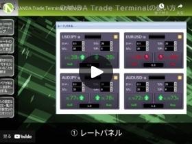 OANDA Trade Terminalの使い方